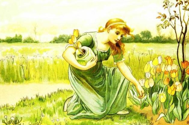 """The girl carried away the tulips."" Illustration by Alice Havers. Published in The White Swans and Other Tales(1885). E.P. Dutton and Company"