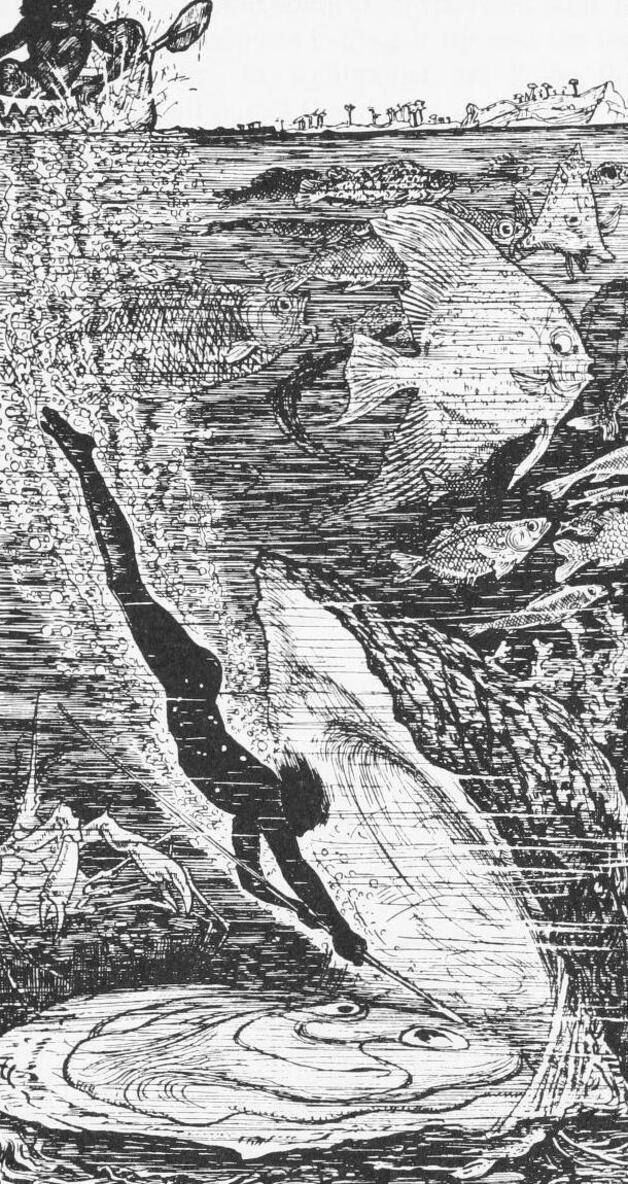 Image of Pivi diving toward the shellfish