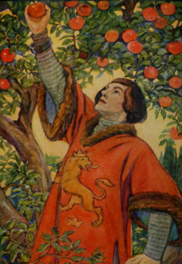 """He climbed up the trunk to the top, and as he was about to reach out for an apple, he saw a ring hanging before it; but he thrust his hand through that without any difficulty, and gathered the apple."" Illustration by Hope Dunlap, published in Fairy Tales by the Brothers Grimm, Rand McNally and Co. 1913. Illustration of a tale by Jakob and Wilhelm Grimm."