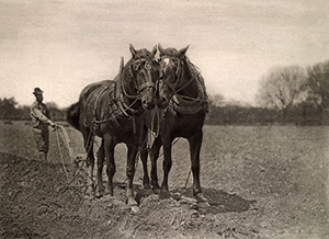 'At Plough, The End of the Furrow'. Photograph by P. H. Emerson.